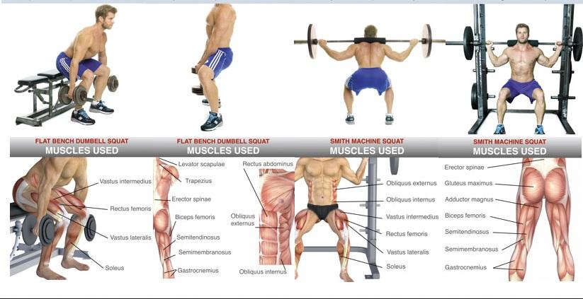 het opbouwen van beenspieren