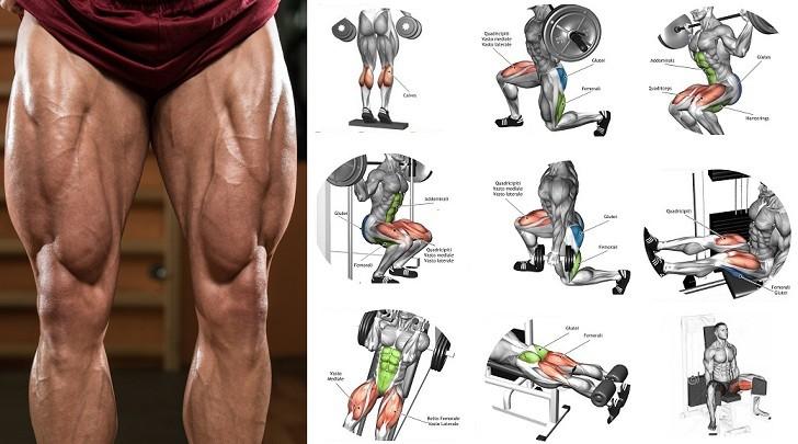 hoe je je beenspieren kunt bouwen